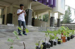 isi-surakarta-FSRD-Mengadakan-Giat-Tanaman-Produktif-Dengan-Tajuk-Grapes-Goes-To-Campus-2